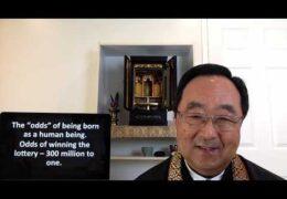 Arigatai: Rare and Wondrous by Rev. Marvin Harada